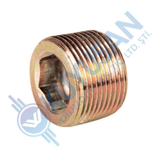 Dıferantıal screw plug